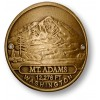 Mt. Adams Hiking Stick Medallion