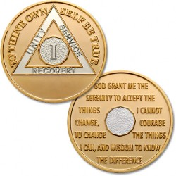 1 Year - AA Proof-like Bronze With Nickel Bi-Plating - 1⅜""