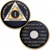 1 Year - AA Proof-like Bronze with Tri-Plate - Gold, Nickel, and Blue Enamel - 1⅜""