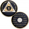 10 Year - AA Proof-Like Bronze Tri-Plate – Gold, Nickel, and Blue Enamel - 1 1/2""
