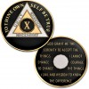 10 Year - AA Proof-Like Bronze Tri-Plate – Gold, Nickel, and Black Enamel - 1⅜""