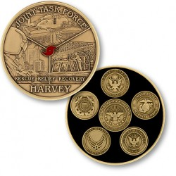 Joint Task Force Harvey - Bronze Antique